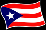 Boricua_WAVE Flag Decal Graphic