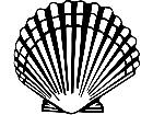Scallop 1 4 0 V A 1 Decal
