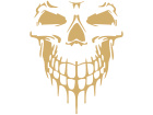 Skull Cool Frontal 1 Decal